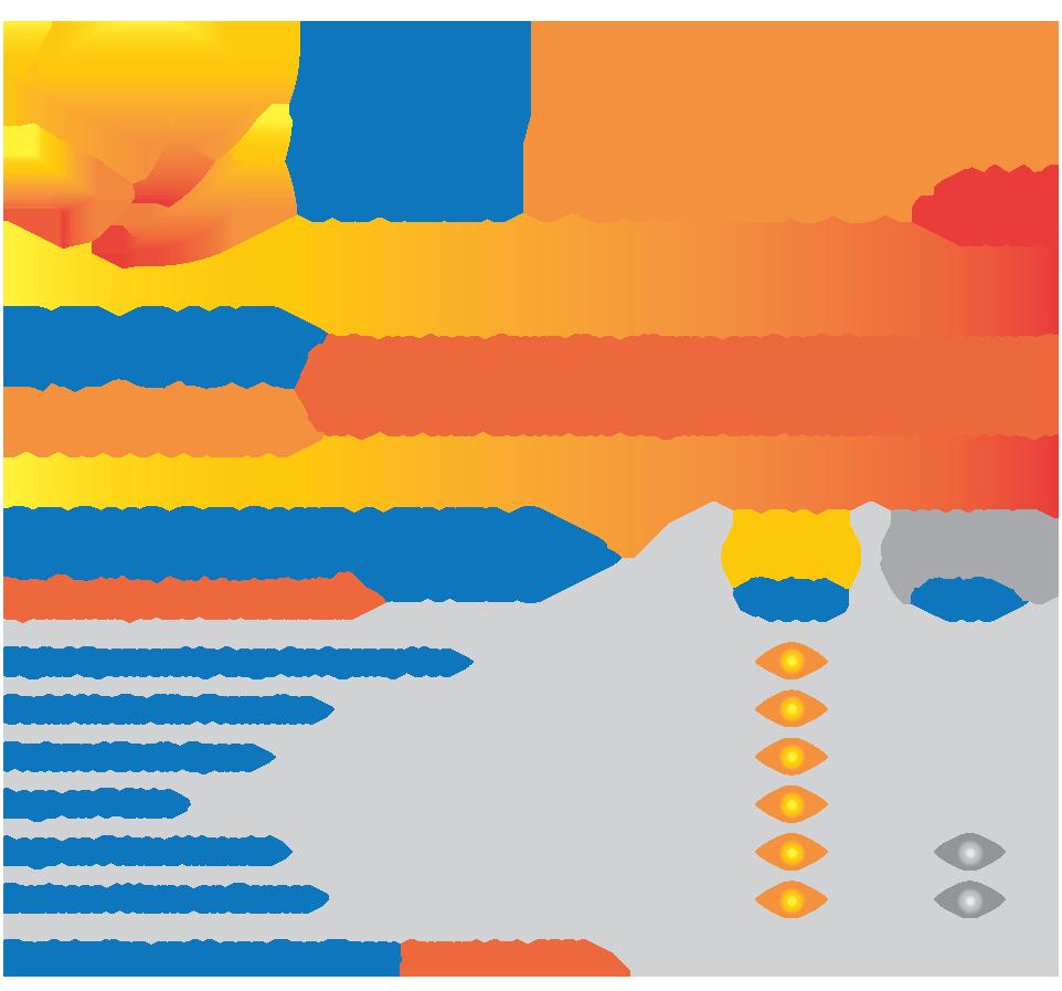 Rally 2021 Sponsorship Grid